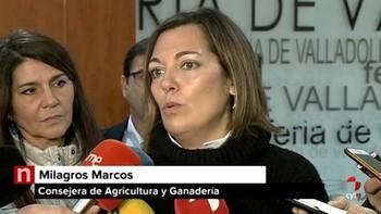 Marcos respalda a la Asociación de Productores de Patata como 'punto de partida' para crear la interprofesional y reforzar el sector