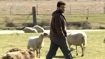 Fernando Pastor es ganadero de ovino y productor de queso ecológico