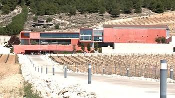 El número de turistas se incrementa un 28% en la Ribera del Duero