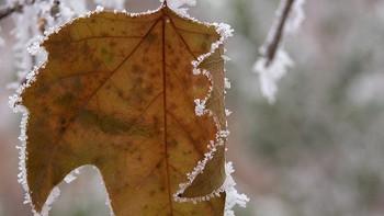 Cuéllar con -7,2 grados, la temperatura más baja del país esta madrugada