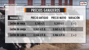 Los mercados (21/10/2016)