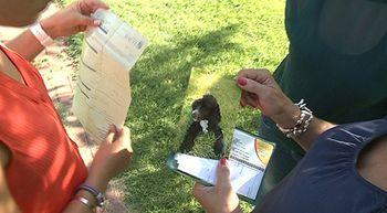 Lleva a su perro al veterinario para incinerarlo y sus restos aparecen en un pinar de Valladolid
