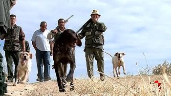 Deportividad y respeto acompañarán más que nunca la veda de caza