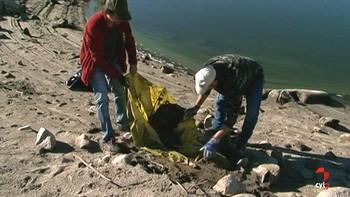 Más de 300 personas colaboran en la limpieza del embalse de El Burguillo en Ávila