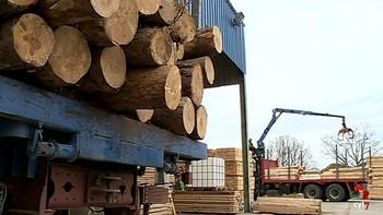 Empresas del sector de la madera piden al consumidor comprobar que compran productos certificados