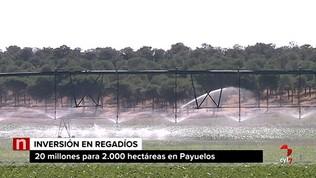 La Junta invierte 19,5 millones para transformar 2.000 hectáreas de regadío de Payuelos, León