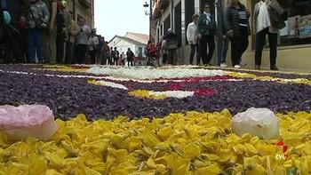 Carrión de los Condes tapiza de flores sus calles para celebrar el Corpus