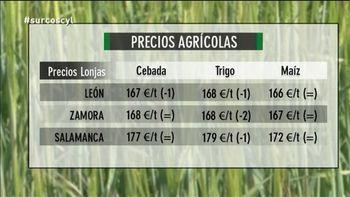 Los mercados (29/01/2016)