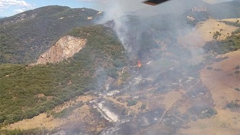 Baja a nivel 0 el incendio forestal de Borrenes, en la provincia de León