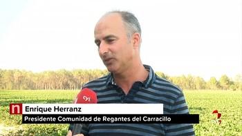 La Comunidad de Regantes de El Carracillo, Segovia, no podrá ampliar el uso de los acuíferos