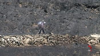La Junta baja a nivel 0 el incendio de Navarredonda de Gredos tras afectar a más de 500 hectáreas