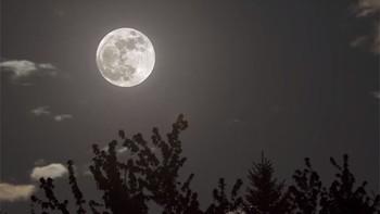La luna, a lo grande