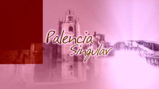 Palencia Singular
