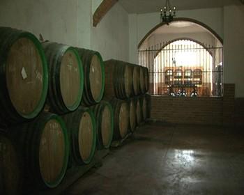 Los vinos de Cebreros reciben la protección nacional transitoria de Denominación de Origen Protegida