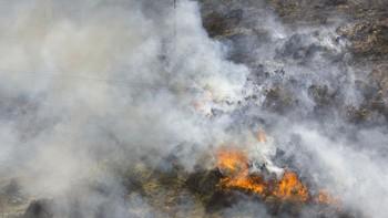 Los bomberos frenan un incedio que amenazaba Siega Verde a las puertas del yacimiento arqueológico