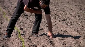 Los agricultores en ecológico hacen malabares para obtener 'sus semillas' certificadas