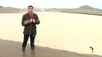 Las lluvias de los últimos tres días dañan el campo
