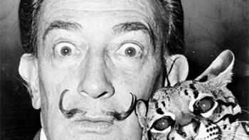 Los forenses extrajeron pelo, uñas y dos huesos largos de Salvador Dalí que serán repuestos