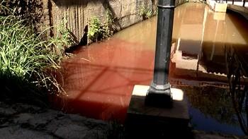 Asden denuncia un nuevo vertido de sangre en la zona del Soto Playa del río Duero en Soria