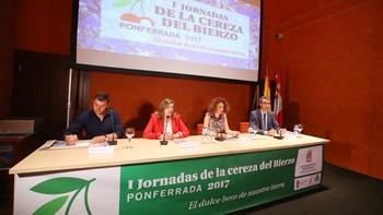 Las I Jornadas de la Cereza del Bierzo subrayan la importancia de promocionar el nuevo marchamo