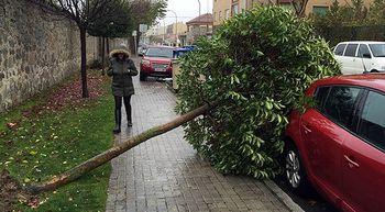La ca�da de objetos por el viento obliga a interrumpir la circulaci�n en diversas calles de �vila