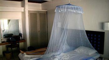 El cambio clim�tico aumenta el riesgo de acercar el dengue al Mediterr�neo