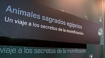 - rtvcyl.es